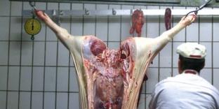 Fleischbranche
